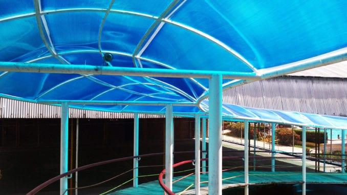 Cobertura com Policarbonato Alveolar do Parque Aquático Rolf